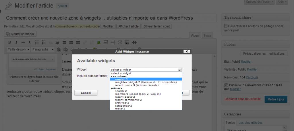 Vous pouvez maintenant sélectionner un des widgets de la 'custom sidebar'